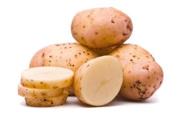 Картофель Импала описание сорта, фото, отзывы